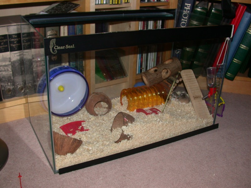 Housing - Roborovski Hamsters